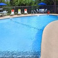 Swimming pool at Fairfield Inn & Suites by Marriott Albany / East Greenbush