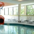 Swimming pool at Fairfield Inn & Suites by Marriott Edmonton North