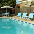 Swimming pool at Four Points by Sheraton Nashville Airport