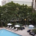 Swimming pool at Fullerton Marriott at California State University
