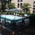 Pool image of Hampton Inn Beaufort