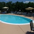Pool image of Hampton Inn Chester / Richmond