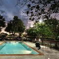 Pool image of Hampton Inn / Houma La