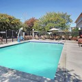 Swimming pool at Hampton Inn & Suites Denton