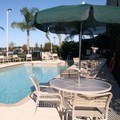 Swimming pool at Hampton Inn & Suites Tampa East