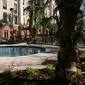 Swimming pool at Hampton Inn & Suites Tampa / Wesley Chapel