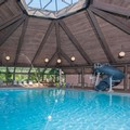 Pool image of Hilton Chicago Indian Lakes Resort