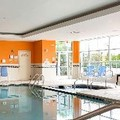 Swimming pool at Hilton Garden Inn Hamilton
