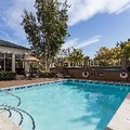 Pool image of Hilton Garden Inn San Mateo
