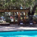 Pool image of Hilton Garden Inn Tampa East / Brandon