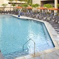 Photo of Hilton Hawaiian Village Pool