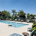 Swimming pool at Hilton Homewood Suites San Diego Liberty Station