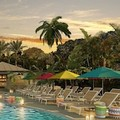 Swimming pool at Hilton Key Largo Resort