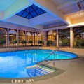 Pool image of Hilton Springfield