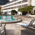 Photo of Hilton Tampa Airport Westshore Pool