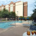 Pool image of Hilton University of Florida