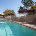 Image of Holiday Inn Airport Conference Center