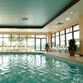 Pool image of Holiday Inn College Park