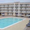 Pool image of Holiday Inn Columbia East Jessup