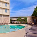 Pool image of Holiday Inn Dallas Market Center