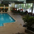 Swimming pool at Holiday Inn Downtown Portsmouth
