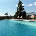 Photo of Holiday Inn Express & Suites Catonsville Pool