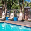 Pool image of Holiday Inn Express & Suites Dallas Addison