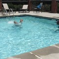 Swimming pool at Holiday Inn Express & Suites Reidsville