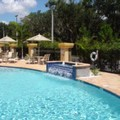 Pool image of Holiday Inn Express Tampa North