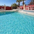 Swimming pool at Holiday Inn Express Tampa Northwest Oldsmar