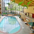 Swimming pool at Holiday Inn Guelph & Conference Center