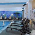 Pool image of Holiday Inn Inner Harbor