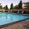 Pool image of Holiday Inn Lakewood