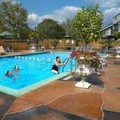 Pool image of Holiday Inn Mt. Kisco