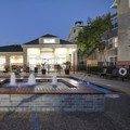 Pool image of Homewood Suites by Hilton Dallas Lewisville