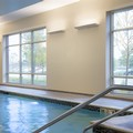 Pool image of Homewood Suites by Hilton Needham Boston