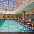 Swimming pool at Hyatt Regency Greenwich