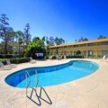 Pool image of La Quinta Inn Daytona Beach / International Speedw
