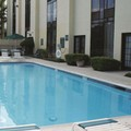 Pool image of La Quinta Inn Stafford / Sugarland