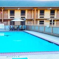 Pool image of Manor Inn College Station
