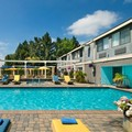 Pool image of Maple Tree Inn