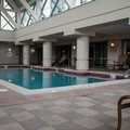 Swimming pool at Marriott Norfolk Waterside