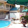 Swimming pool at Masters Inn Doraville