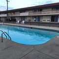 Pool image of Motel 6 Mason