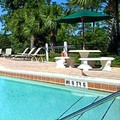Swimming pool at Palisades Resort Orlando