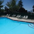 Photo of Pepper Tree Inn Pool
