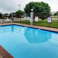 Pool image of Quality Inn Hillsboro Texas