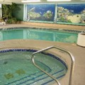 Pool image of Quality Inn & Suites Confere