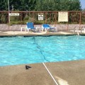 Pool image of Quality Inn & Suites Worcester
