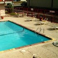 Pool image of Red Roof Inn Amarillo Airport / Downtown